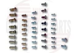 Throttle & Choke Shaft Screw Assortment
